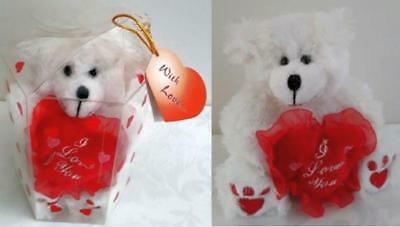New Valentine's Day Teddy Bear Valentine's Gifts in Plastic Cylinder