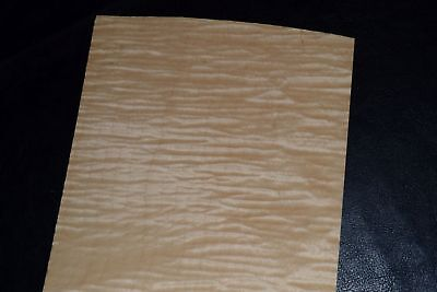 Curly Maple Raw Wood Veneer Sheets 6 x 36 inches 1/42nd               8632-16