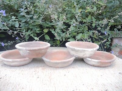 "5 Old Hand Thrown Terracotta Plant Pot Saucers 4.75"" Diameter (1177b)"