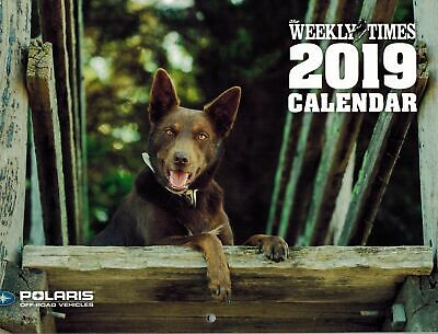 2019 The Weekly Times Dogs Calendar Free Postage