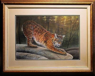 Original  Drawing  / BOBCAT ON THE ROCKS / Wildlife by Poling