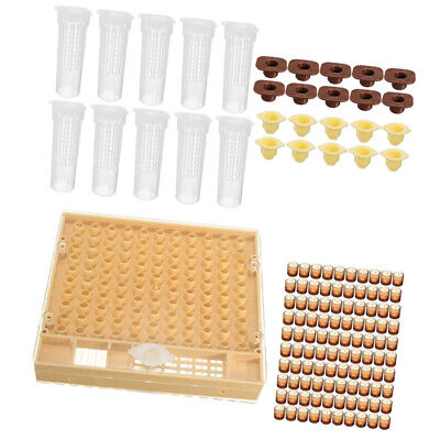Queen Rearing System Cultivating Cell Cup Cage Beekeeping Box Bee Catcher