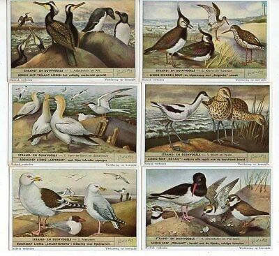 Liebig Set S 1610     F 1592  ' Birds Of Beaches & Dunes  ' Ex.  Cond. Gen