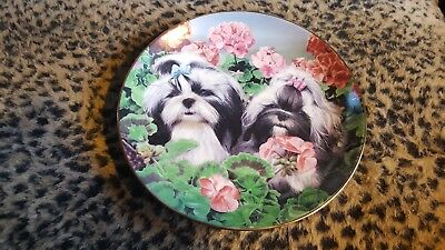 "Shih Tzu Plate Limited Edition ""GARDEN PARTY"" by Simon Mendez -The Danbury Mint"