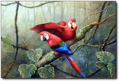 ZOPT754 two rare birds on branch hand painted art OIL PAINTING on CANVAS