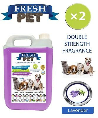 Fresh Pet Niche Chien Désinfectant Double Force Parfum - 5L Lavande