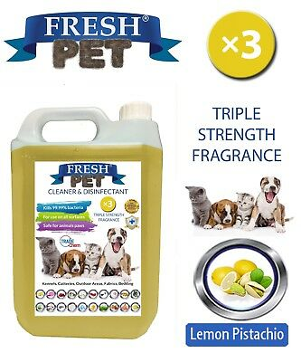 Fresh Pet Niche Chien Désinfectant Triple Force Parfum - 5L Citron Pistache