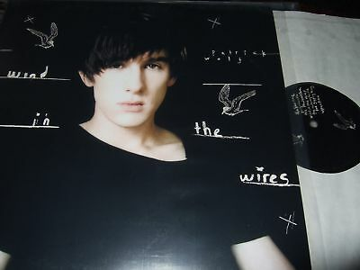 Patrick Wolf : Wind In The Wires Lp 2005 Tomlab Germany