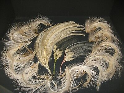 Antique Vintage Tan Feather Plume Millinery Hat Trim French Victorian LOT