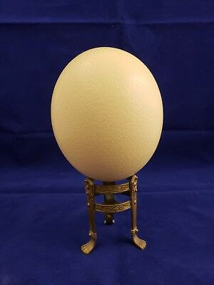"""Large Ostrich Egg Shell 17"""" X 15 1/4"""" Great For Crafts. Easter. Nice!!"""