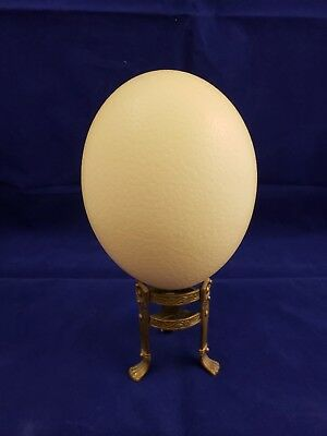 """Large Ostrich Egg Shell 18"""" X 16"""" Great For Crafts. Easter. Nice!!"""