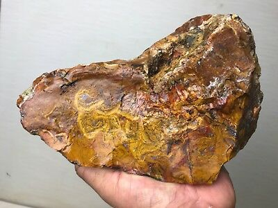 New!!! Rare Stock Top Quality Flame Agate Rough 6.5 Lbs - Durango, Mexico