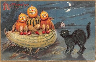 1908 Jack O Lantern Head Kids on Giant Squash Black Cat Halloween post card Tuck