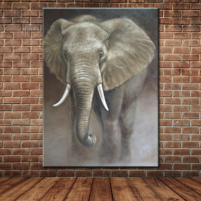 CHOP800 hand painted beautiful animal color elephant oil painting art canvas
