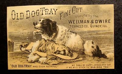 Victorian Trade Card-OLD DOG TRAY TOBACCO CO.-DOG WITH DYING LITTLE GIRL