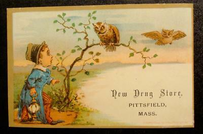 Victorian Trade Card-NEW DRUG STORE, PITTSFIELD, MASS.--BOY WITH OWLS IN TREE