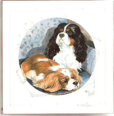 Cavalier King Charles Spaniel Limited Edition Print Barbara Hands Boz #17