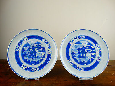 Pair of Antique Chinese Porcelain Plates Blue and White Rice Grain 19th Century