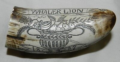 Faux / Reproduction / Replica Scrimshaw Whale's Tooth - Whaler Lion + Ship