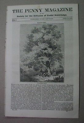 1835 - MAPLE SUGAR syrup tree; SALZBURG salt mines; GOLD MINES; Tynemouth Priory