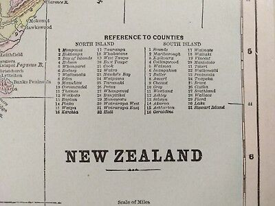 Vintage 1900 NEW ZEALAND Map Old Antique Historical WELLINGTON NEWTOWN MAPZ