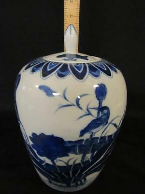 """Chinese Blue and White Ceramic Porcelain 10.25"""" Ginger Jar and Lid, Lotus Birds"""