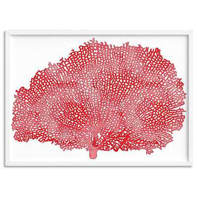 Red Nautical Sea Fan Coral - Wall Art Print Poster Canvas