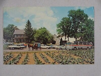 c1950s Postcard The Amish Farm And House Lancaster PA USA