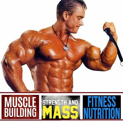 Bodybuilding 5 Books on Muscle Building Weight Gain Nutrition & Diet Gym Book