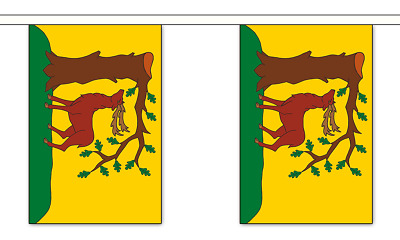 Norfolk No Crest British County 3 metre long 10 flag bunting