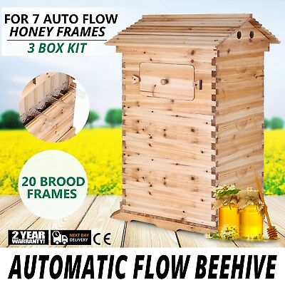 Bee Hive 3 Layers For 7 Auto Flow Honey Frame Wooden Beehive Stylish Honeycomb