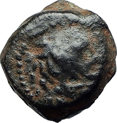 ANTIOCHOS VII Sidetes 138BC Seleukid Ancient Greek Coin NEMEAN LION CLUB i75511