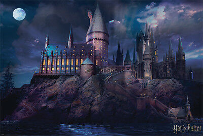 Harry Potter - Hogwarts Castle - Official Maxi Poster - 61 x 91.5cm PP34369