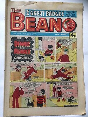 DC Thompson THE BEANO Comic. Issue 1814 April 23rd 1977 **FREE UK POSTAGE**