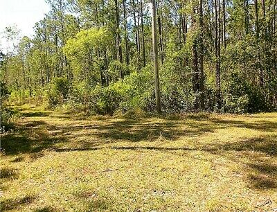 11.5 Acres - Forest View Road, DeLand - Lake County, Floridal