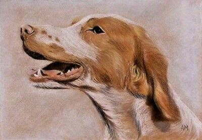 Original Vintage 20th Century Pastel Painting Of A Dog, Fine Quality, Signed