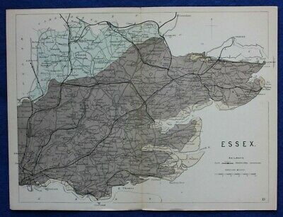 Original antique GEOLOGICAL MAP, ESSEX, RAILWAYS, Reynolds, 1864-89