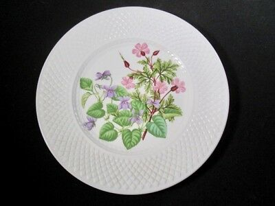 Spode   Wild Rose  Flowers  Plate  -   Great Vintage Condition
