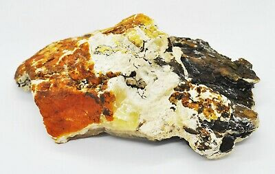 142.8gr. Huge Big Real Natural Genuine Antique White Bone Baltic Amber Bernstein