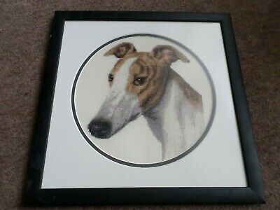 Whippet Greyhound lurcher Needlework cross-stitch signed picture framed ...