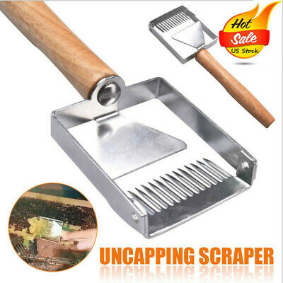 Stainless Steel Bee Hive Uncapping Honey Fork Scraper Shovel Beekeeping Tool USA