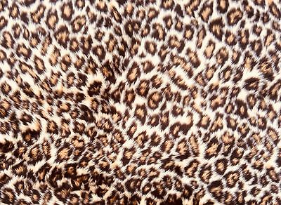 "Leopard Print Fluffy Cuddly Fur Fabric 152cm wide (60"") sold by 1/2 & 1 meter"