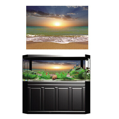 Aquarium Fish Tank Background Poster Beach Landscape Decor 76x56cm