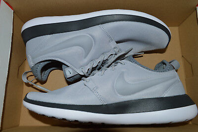 181485fe54aa New Nike Womens Roshe Two 2 Run Running Shoes 844931-005 sz 10 Wolf Grey