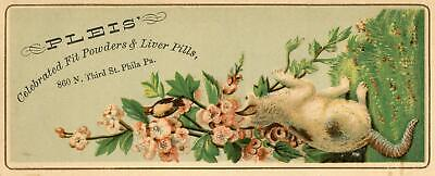 Pleis*fit (Epilepsy) Powders & Liver Pills*philadelphia*cat*bird*trade Card