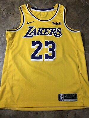 Nike LeBron James Icon Edition Swingman Men s Jersey LA Lakers - MENS LARGE 45888d51a