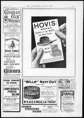 1894 Antique Print  Advertising - Hovis Bread Will's Navy Cut  Club Whisky  (57)