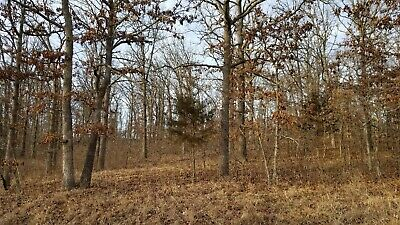 """6.23 acres """"God's Country"""" Land at The Lake of the Ozarks - Missouri !!!"""