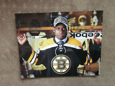 Malcolm Subban Signed Boston Bruins 8x10 Photo Nhl Draft 22 25