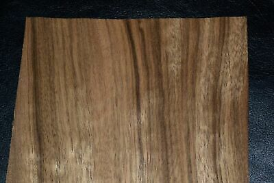 Paldao Wood Veneer Sheets  5.5 x 48  inches                       8635-12